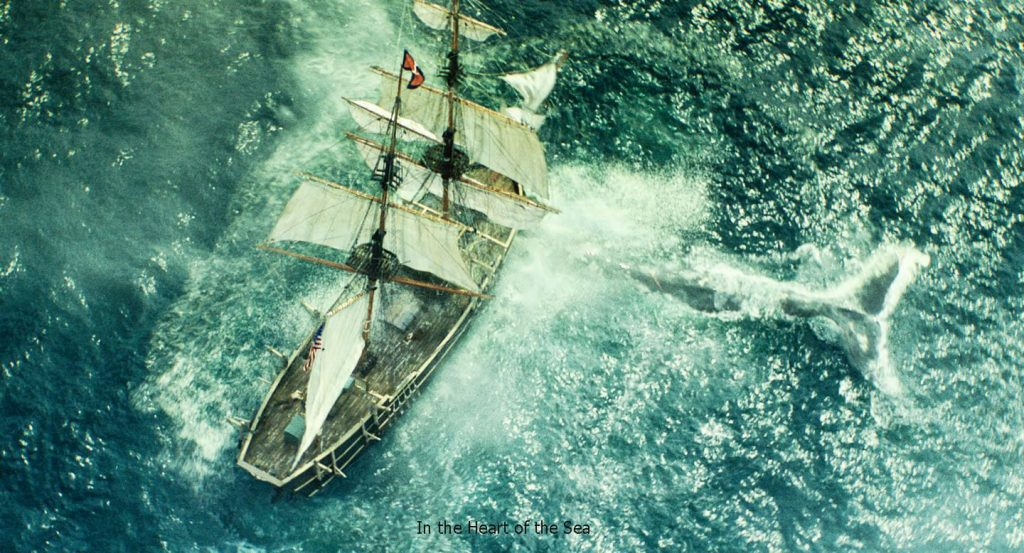 หัวใจเพชฌฆาตวาฬมหาสมุทร