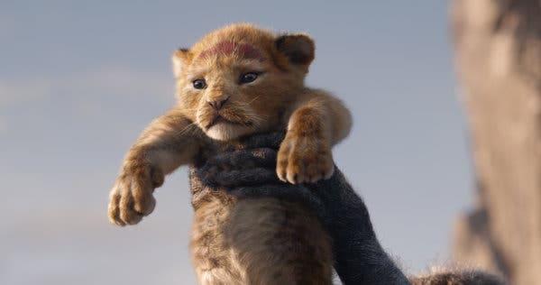 The LionKing